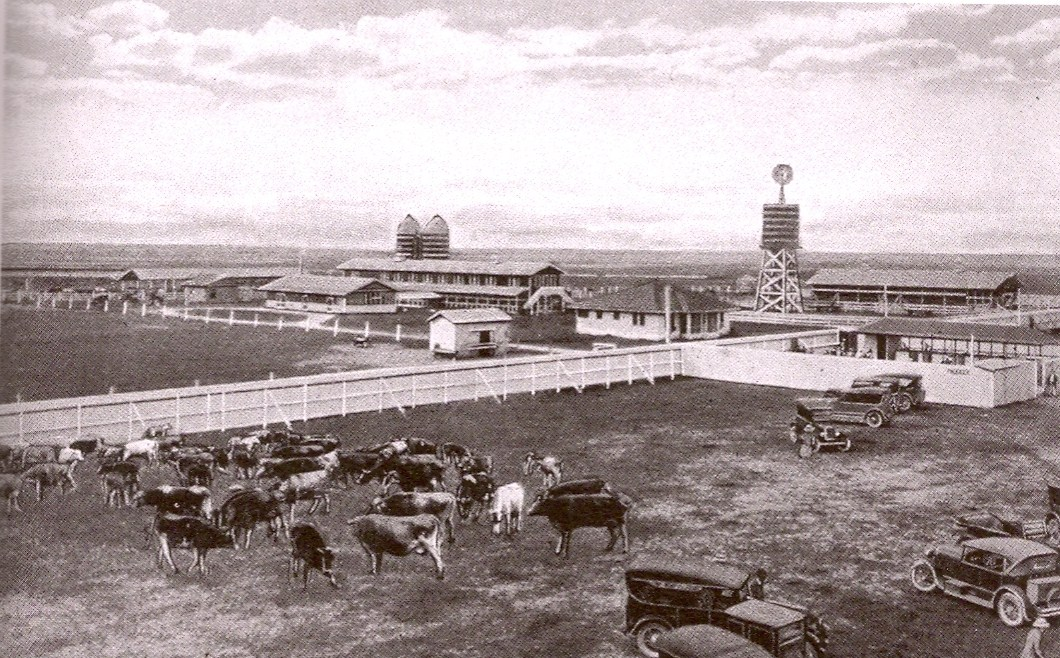 Curtiss Dairy Farm