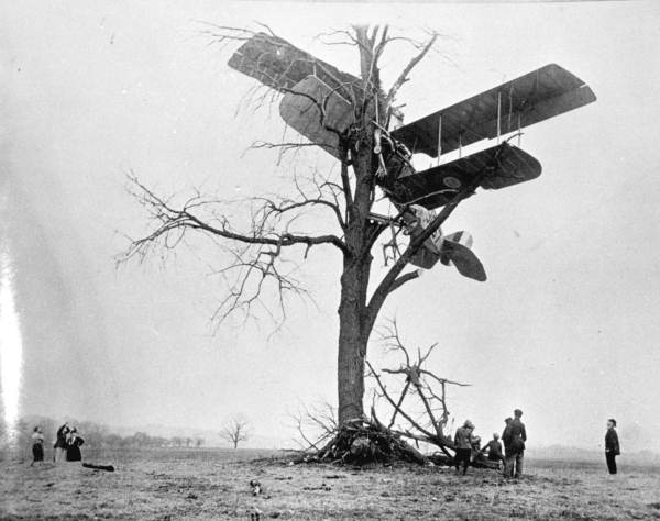 Curtiss Jn 4. Curtiss JN-4 Jenny in a tree